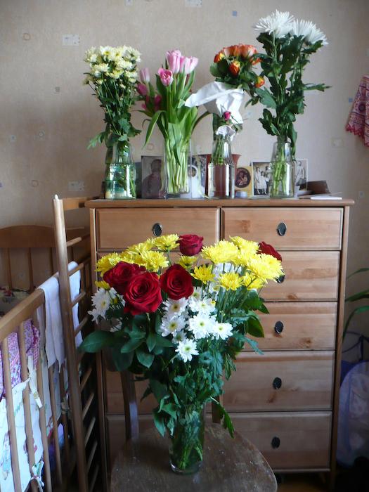 Tryphon's flowers